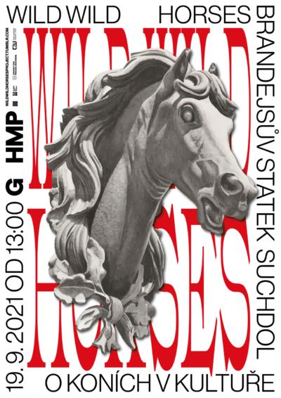 Vladimír Turner: Wild Wild Horses / TriangulUM 2021