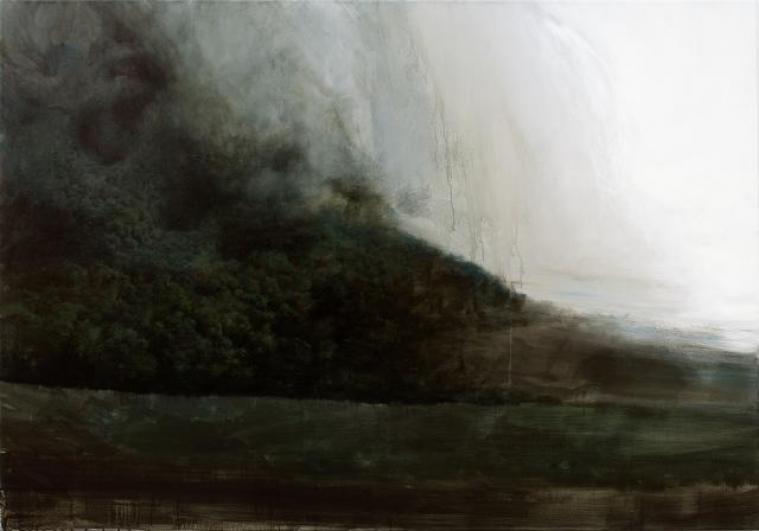 Bez názvu, 2011, akryl, olej na plátně, 200×140 cm