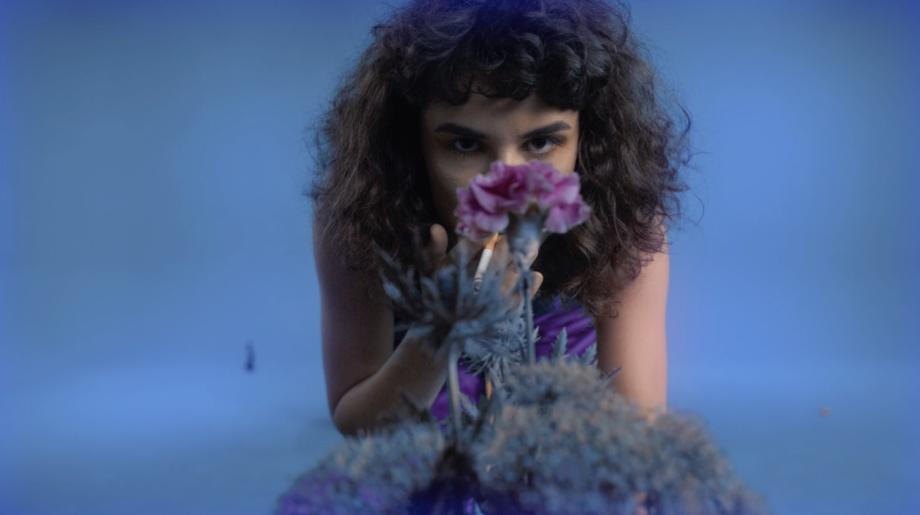 Valentýna Janů, Is Your Blue the Same as Mine?, video instalace, Colloredo-Mansfeldský palác, kočárovna, 2018. Foto Radek Brousil