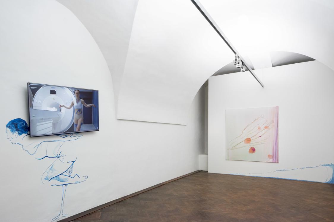 view to the exhibition Start up: Miroslava Večeřová, Pavel Příkaský – Antidote, Colloredo-Mansfeld Palace, coach house, 2018. Photo by Tomáš Souček