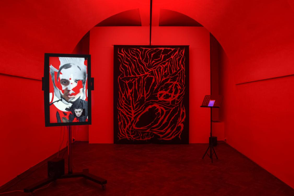 view to the exhibition Start up: František Fekete – Fluid Identity Club, Colloredo-Mansfeld Palace, coach house, 2018. Photo by Oskar Helcel