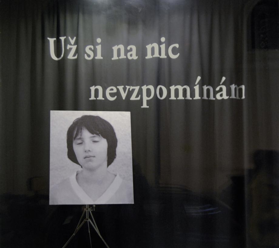 Sráč Sam, Už si na nic nevzpomínám, 2014, fotografie, text, 162×175 cm