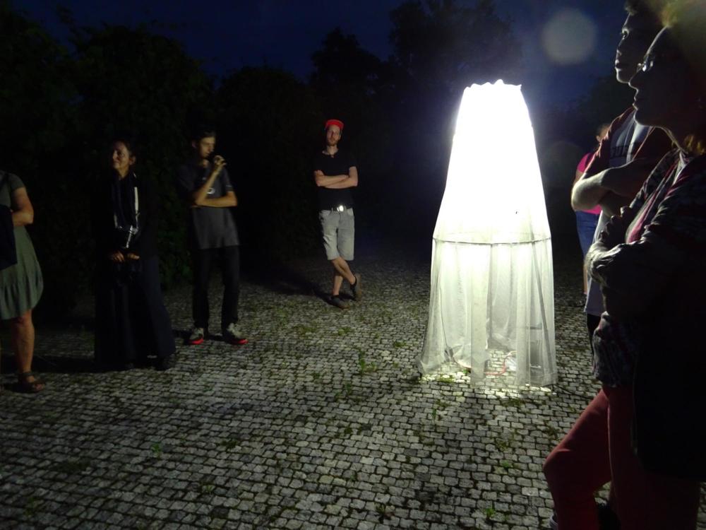Noční letci – pozorování nočního hmyzu