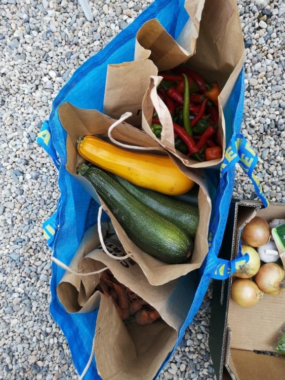 zelenina od Asociace místních potravinových iniciativ, o.p.s.