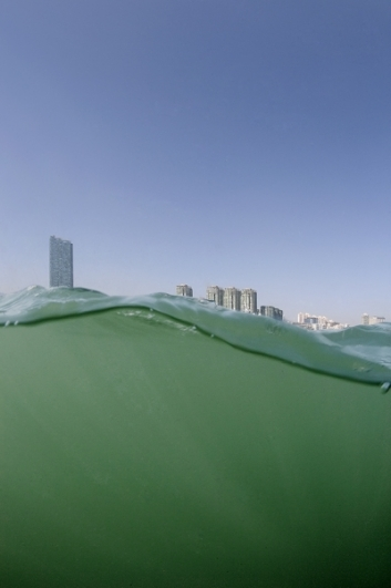 Andreas Müller-Pohle, Kowloon Bay, from Hong Kong Waters, 2009
