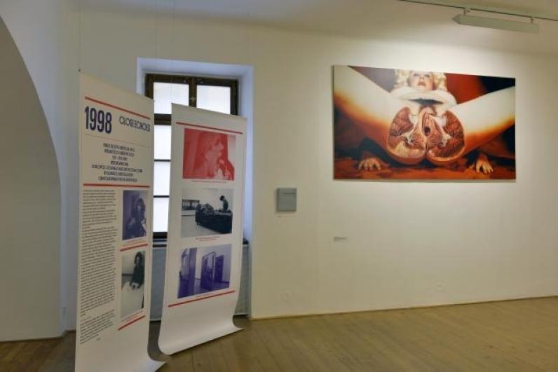 pohled do výstavy Život Galerie hlavního města Prahy 50, Dům U Zlatého prstenu, 2013. Foto Oto Palán
