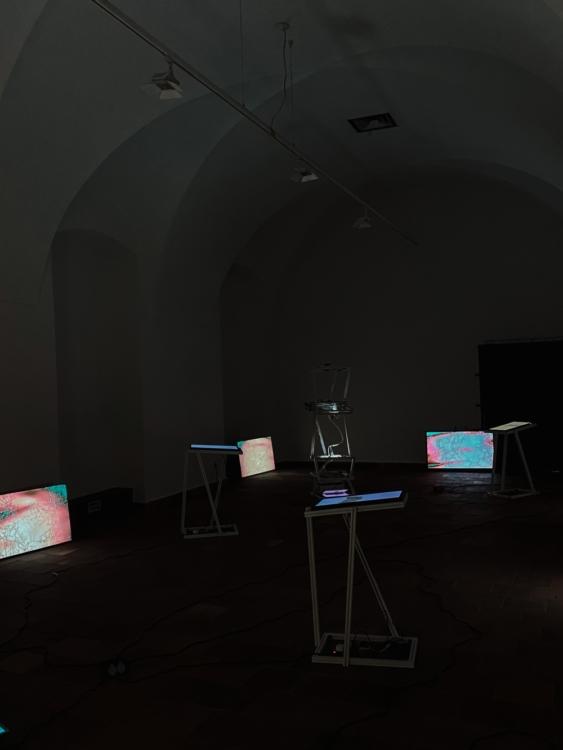 view to the exhibition of Saša Spačal: MycoMythologies, Troja Château, 2021. Photo by Prague City University