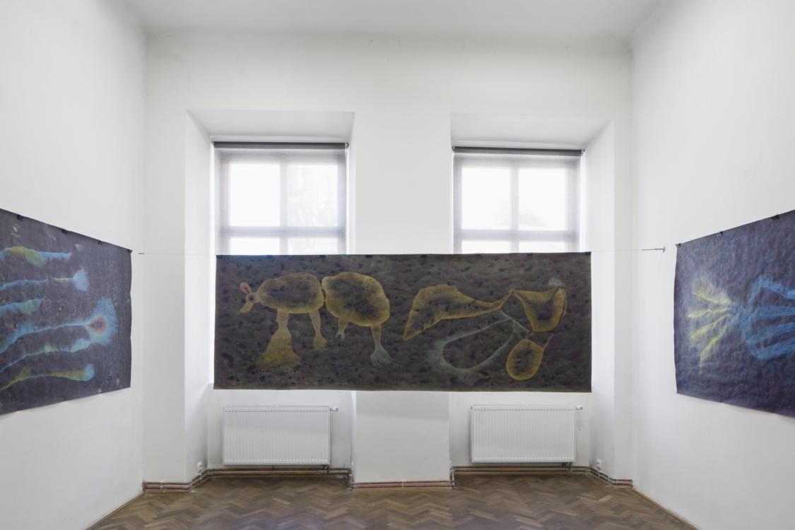 view to the exhibition Erika Bornová: Madness is the Guardian of the Night, Colloredo-Mansfeld Palace, 2021. Photo by Tomáš Souček