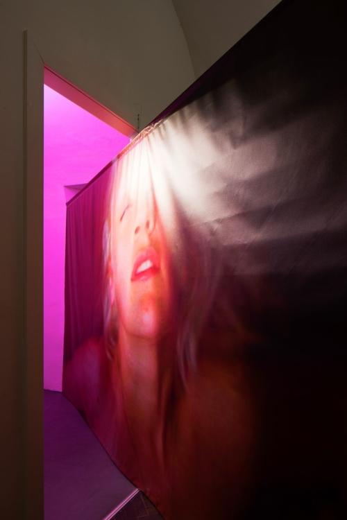 pohled do výstavy Start up: Eliška Havlíková: Mít chuť. Jít dál., Colloredo-Mansfeldský palác, kočárovna, 2019. Foto Tomáš Souček