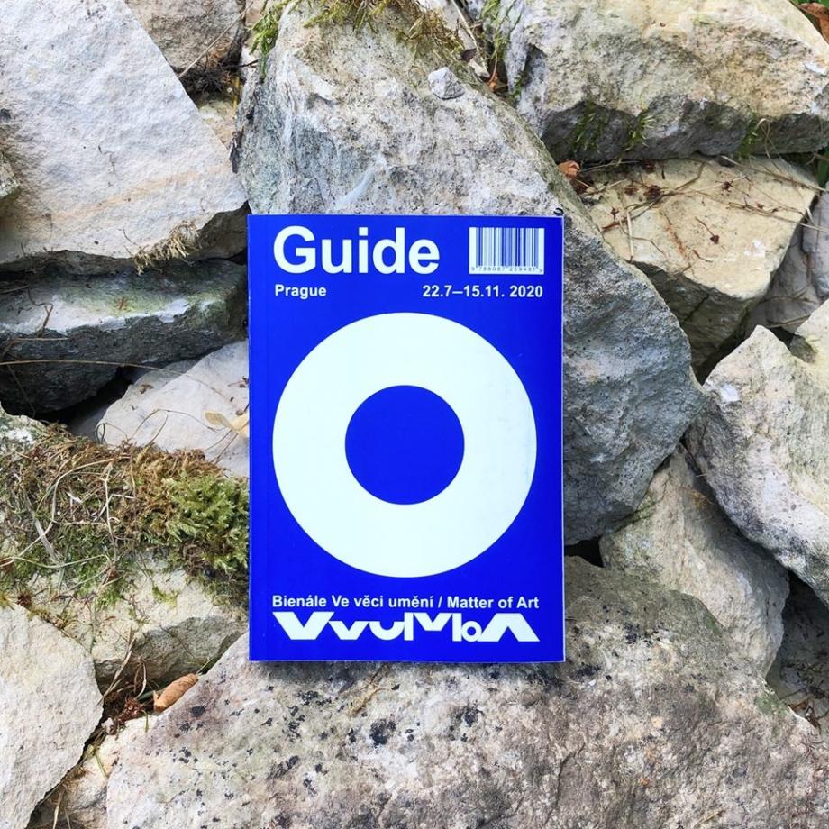 The Biennale Guide