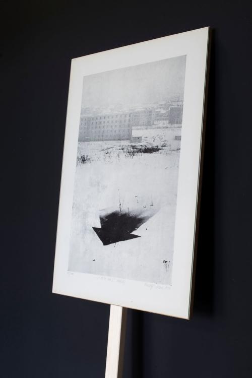 pohled do výstavy Rudolf Sikora a Vladimír Havlík: Sníh kámen hvězda strom, Colloredo-Mansfeldský palác, 2020. Foto Tomáš Souček