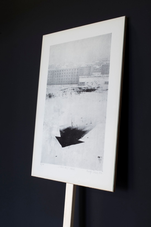 view to the exhibition of Rudolf Sikora and Vladimír Havlík: Snow Stone Star Tree, Colloredo-Mansfeld Palace, 2020. Photo by Tomáš Souček